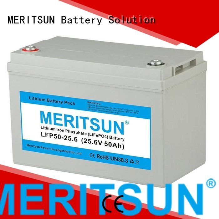 MERITSUN Brand 100ah lifepo4 battery price liion 200ah